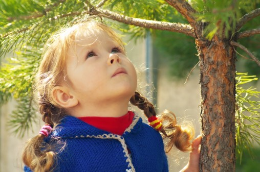 girl-in-pine-forest