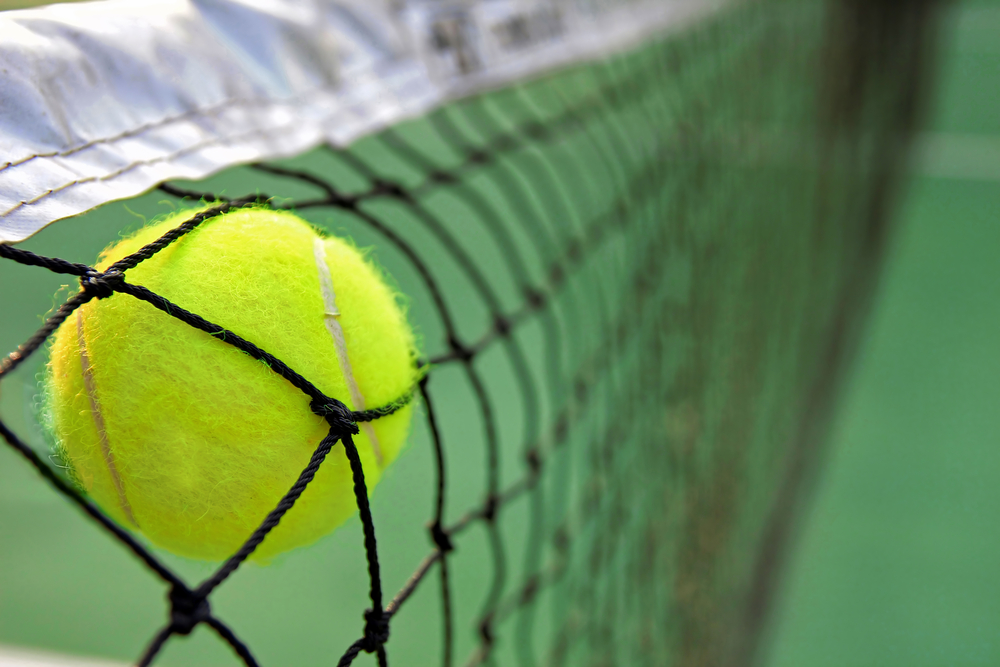 tennis-ball-in-net