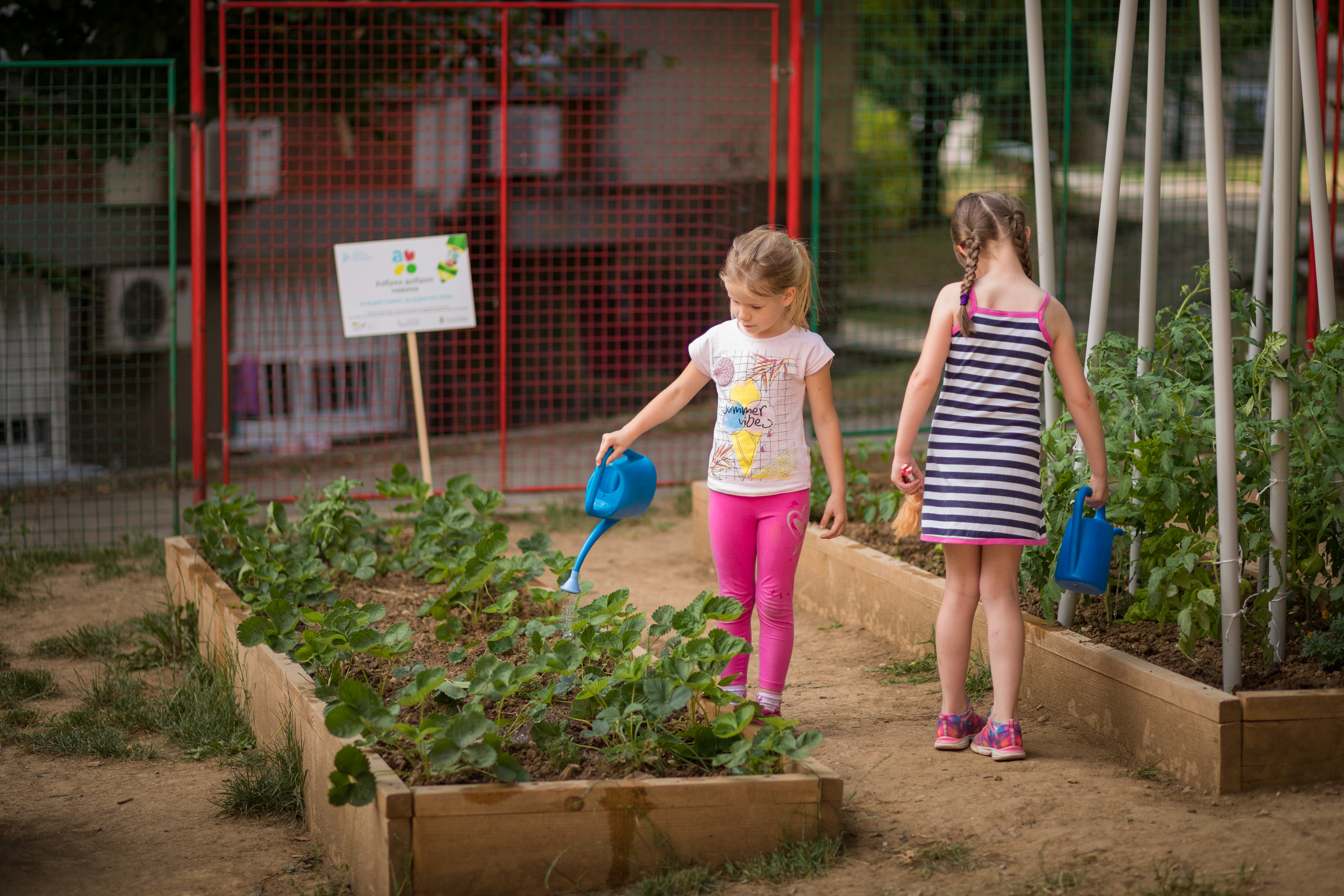 Summer is perfect for gardening with your kids. Photo by GIZ