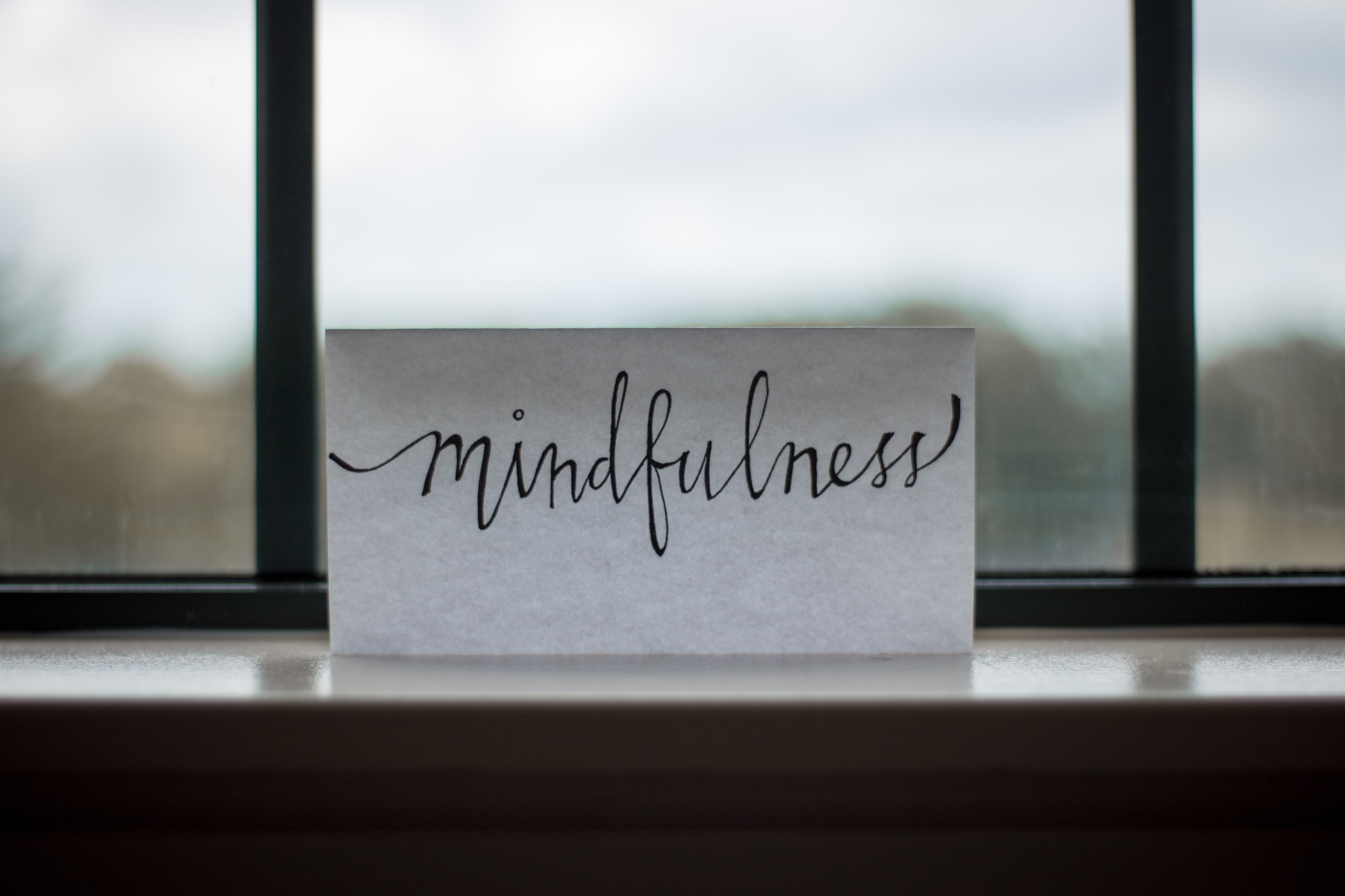 Mindfulness is very needed in this modern world.