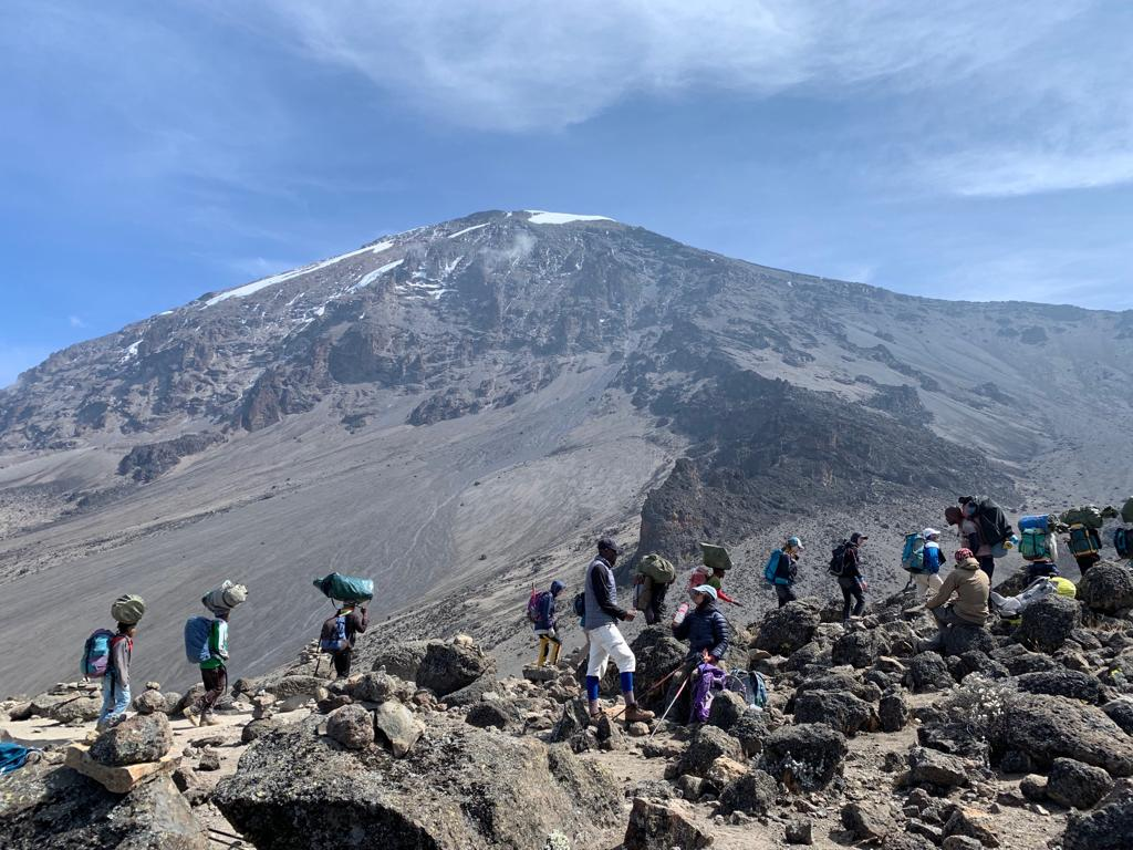 ount Kilimanjaro is the tallest mountain in Africa, making it one of the seven summits. Each year thousands of climbers try to reach the peak, but many give up due to the altitude sickness.