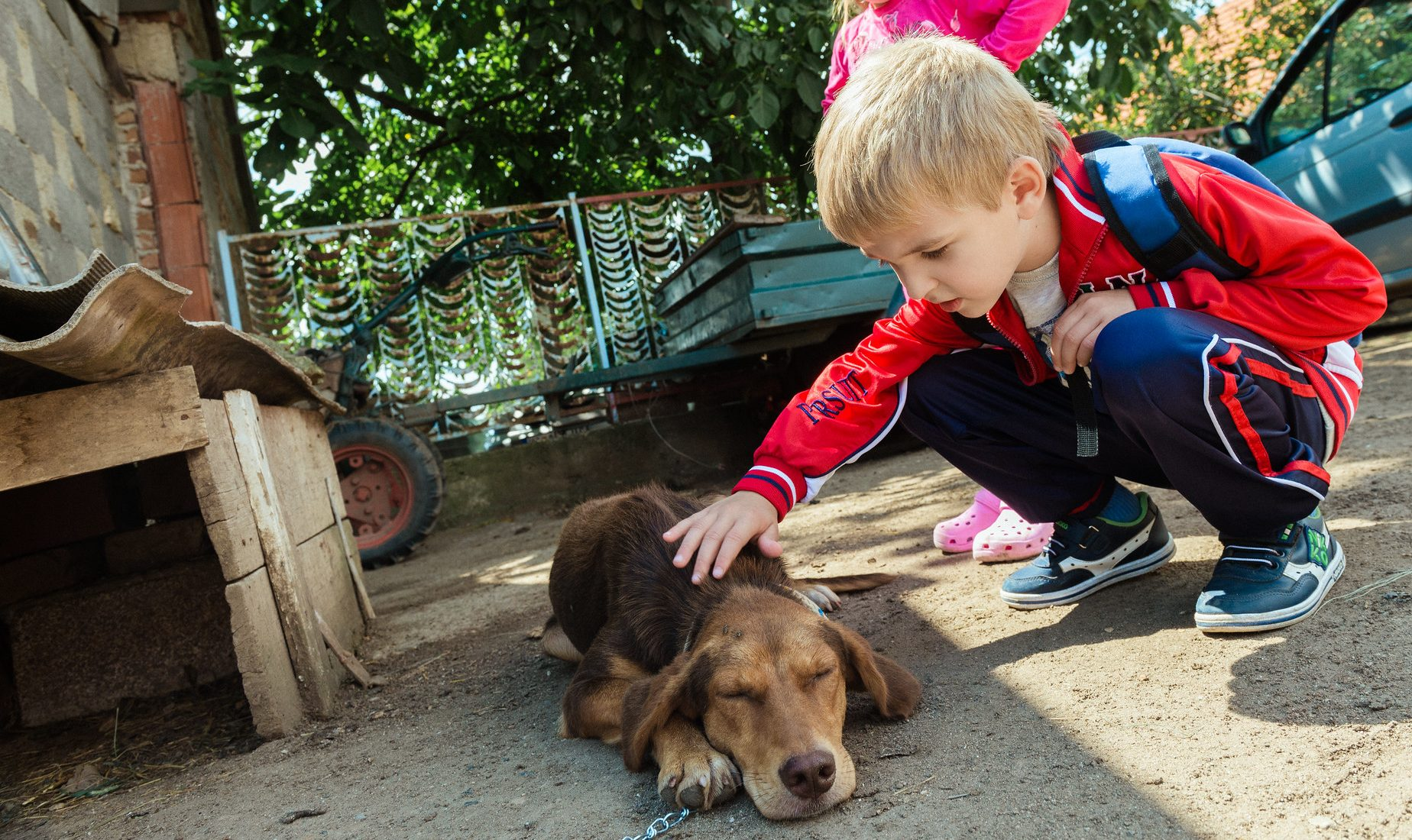 Dogs are a major part of everyday life in villages in Serbia. They have an immense influence on the development of children who live there.