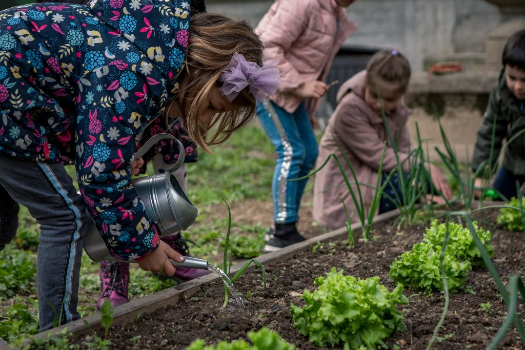 When you try it, you will quickly see that there are a bunch of stuff kids could learn from composting process.