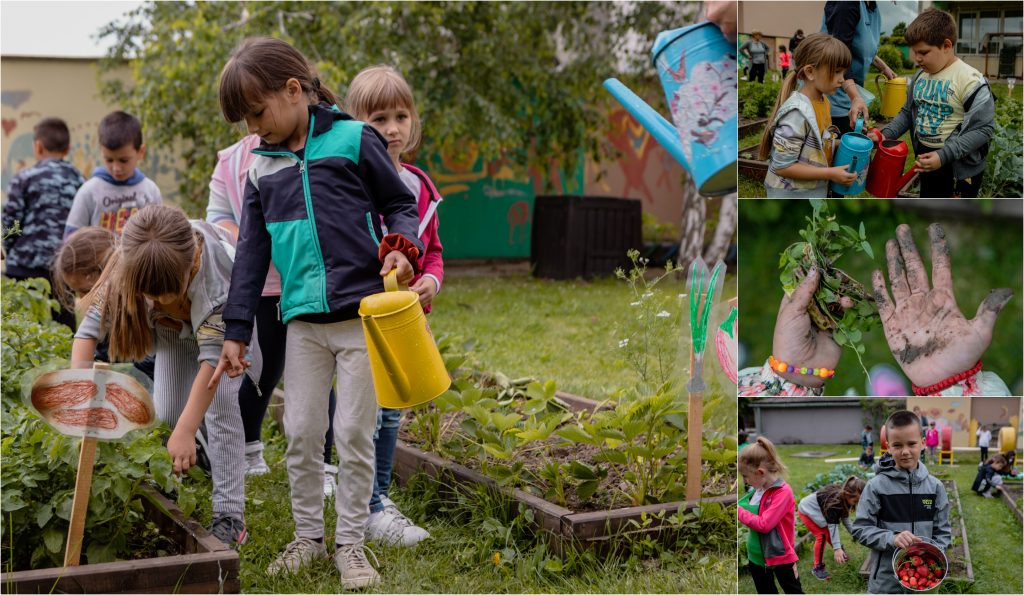 """Thanks to our program """"ABC of Better Me"""", children in preschools throughout Serbia enjoy all benefits of gardening."""