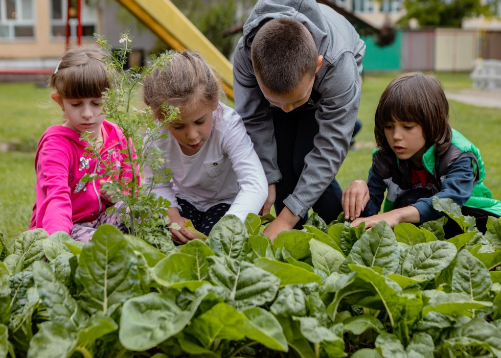 There are numerous benefits of gardening for children.