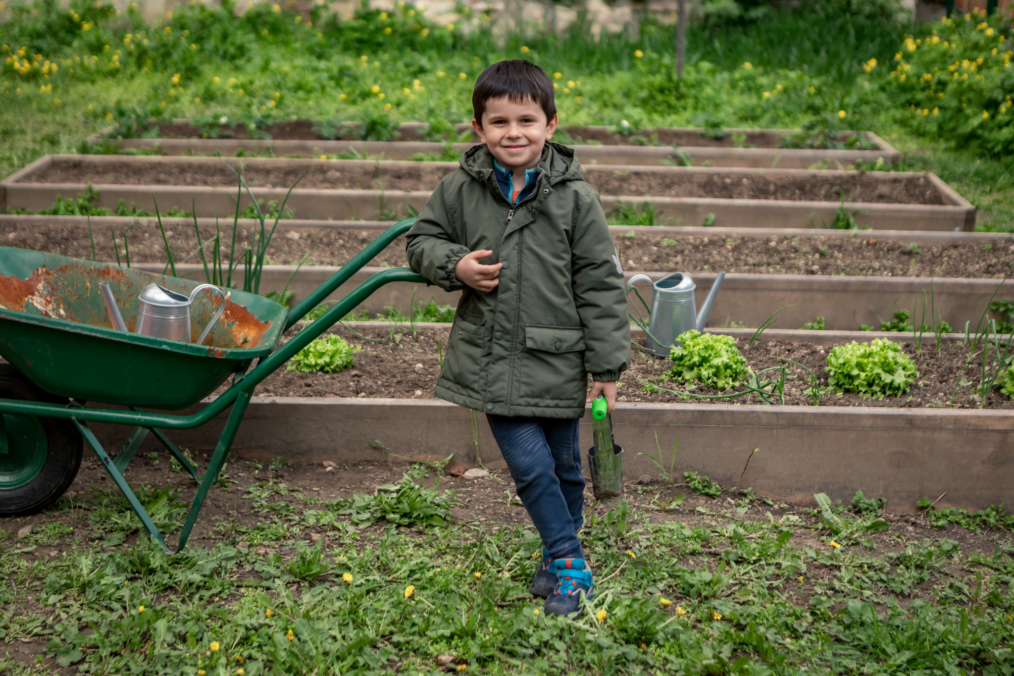 """Thanks to our """"ABC of Better Me"""" program, children learn more about environmental protection and the growth of fruits and vegetables."""