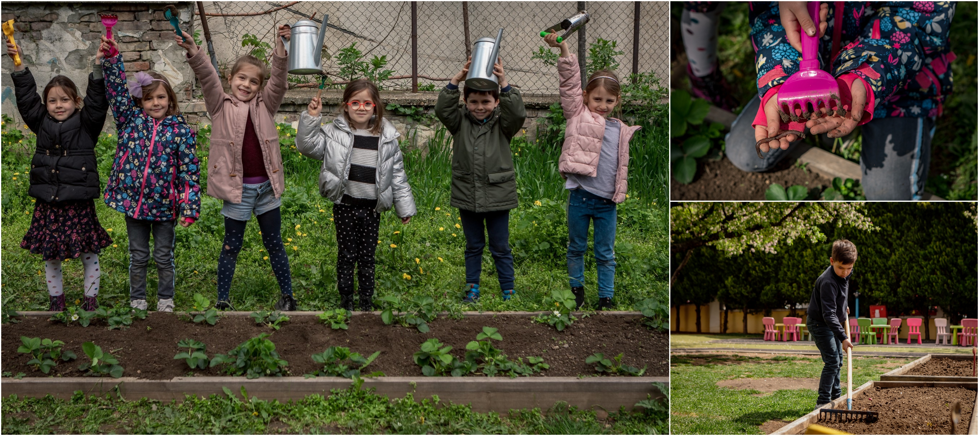 A key part of the program is the establishment and maintenance of gardens in preschools throughout Serbia.